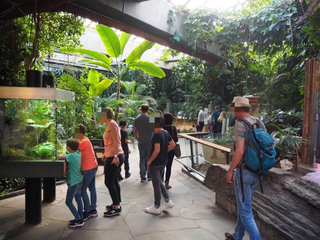ケルン動物園の爬虫類フロア