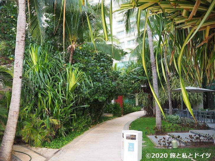 ライブアクアビーチリゾートカンクンの庭