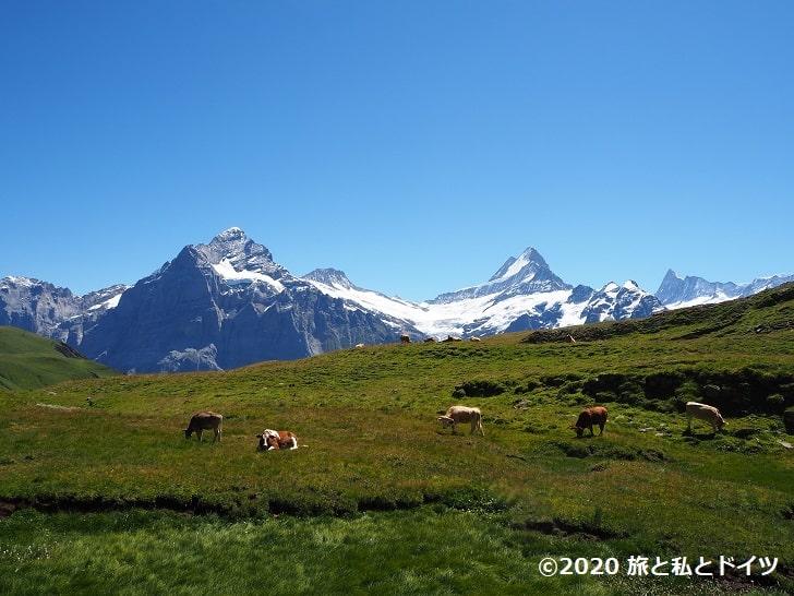フィルスト→バッハアルプゼーのハイキングコース